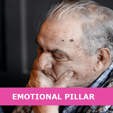 Emotional Pillar